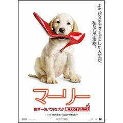マーリー 世界一おバカな犬が教えてくれたこと 画像