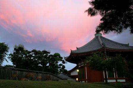 夕焼けピンク空の南円堂M