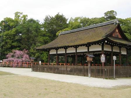 上賀茂神社の境内