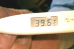 39,6℃☆\(^o^)/
