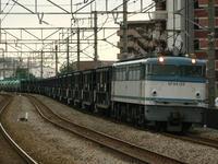 P1040846.JPG