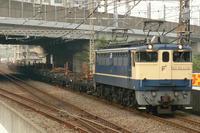 P1050332.JPG