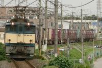P1050408.JPG