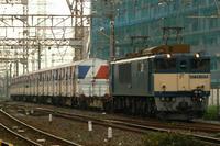 P1050654.JPG