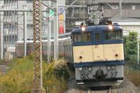 P1050926.JPG