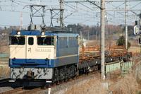 50e64039.JPG