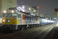 f506d7d5.JPG