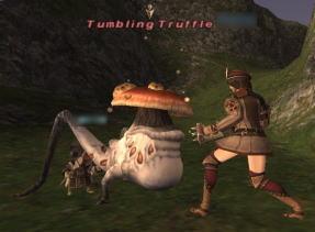 TumblingTruffle 発見!!