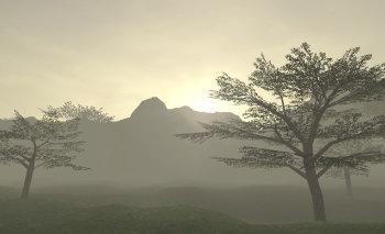 ロンフォの朝