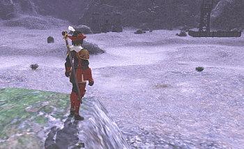 港から出てほぼ正面の岩で待っていると・・・