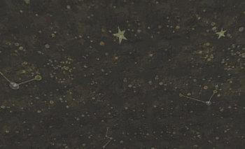 天井には星が沢山描かれていました
