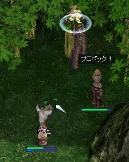 screenverdandi029.jpg