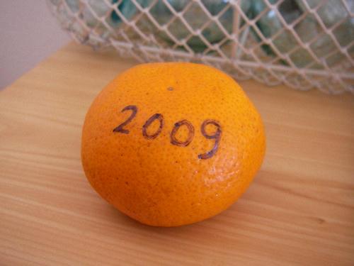 SANY1243.JPG
