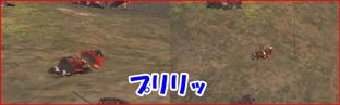 20070711012348.jpg