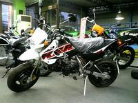KSR-001.JPG