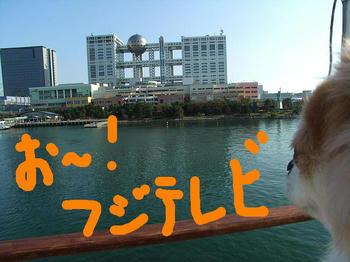 11.04fujiTV.jpg