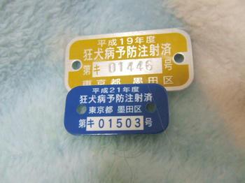 DSCF3210.JPG