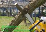 梨の剪定写真