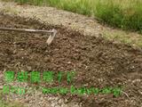畝 作る方法