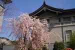 090410tokyo_n_museum03.jpg