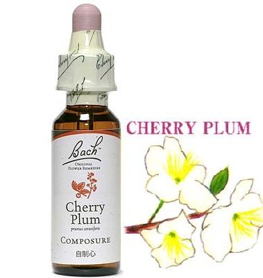 6.cherryplum