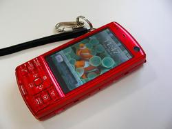 SANY0063-small.JPG