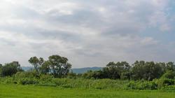 SANY0561.jpg