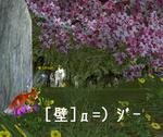 7fe32ac7.jpg