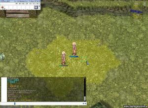 screenheimdal000_up.JPG