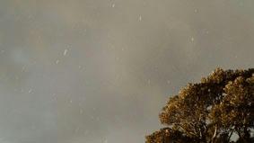 雪in大浜
