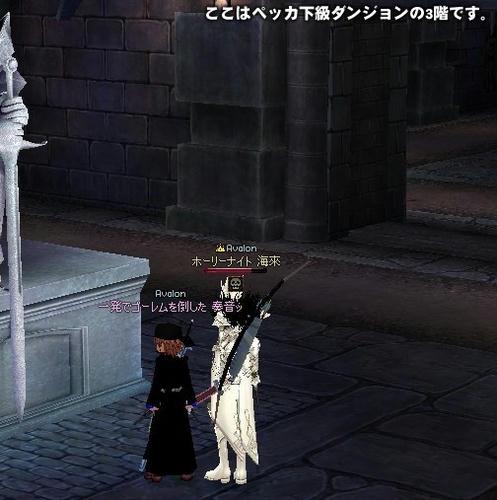 mabinogi_2008_02_22_002.jpg