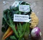 おまかせ野菜セット