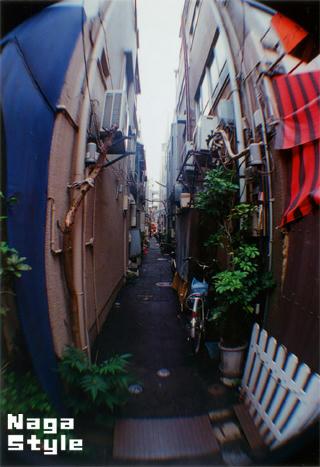 20100730_06.jpg