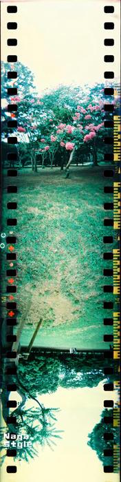 spinner360_01.jpg