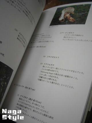 20101231_10.jpg