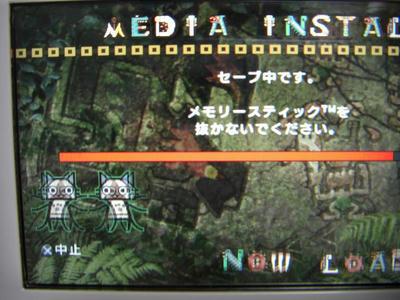 CIMG0096.JPG