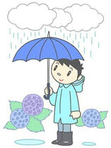 Rainy season, Entering the rainy season, In the rainy season, Hydrangea