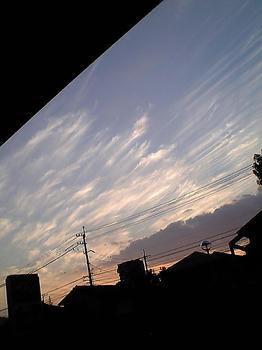 08.11.26sora-2.jpg