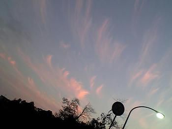 08.11.26sora-4.jpg