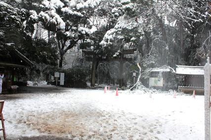 東京・雪・1月14日