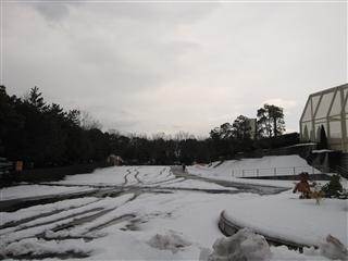コースの風景