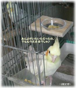 80215-fu.JPG