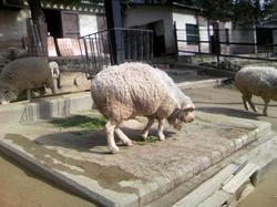 五月山動物園2