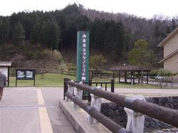 コウノトリの郷公園1
