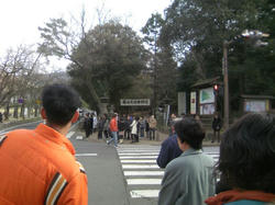 2010年初詣1