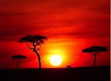 池田先生「21世紀はアフリカの世紀」|21世紀の日蓮仏法