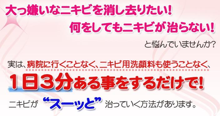 http://file.nikibi.99ing.net/b773855b.jpg
