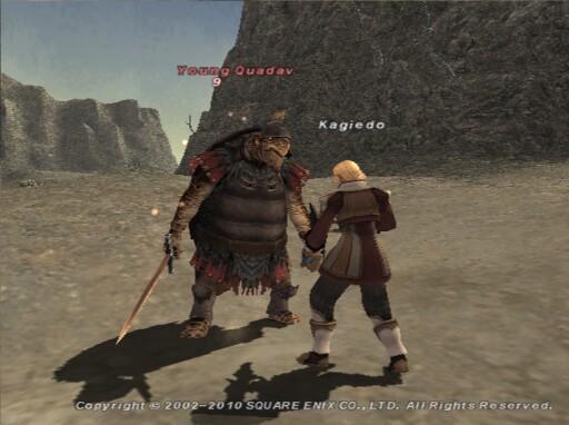 モンクでYoung Quadavと戦っているKagiedoの画像