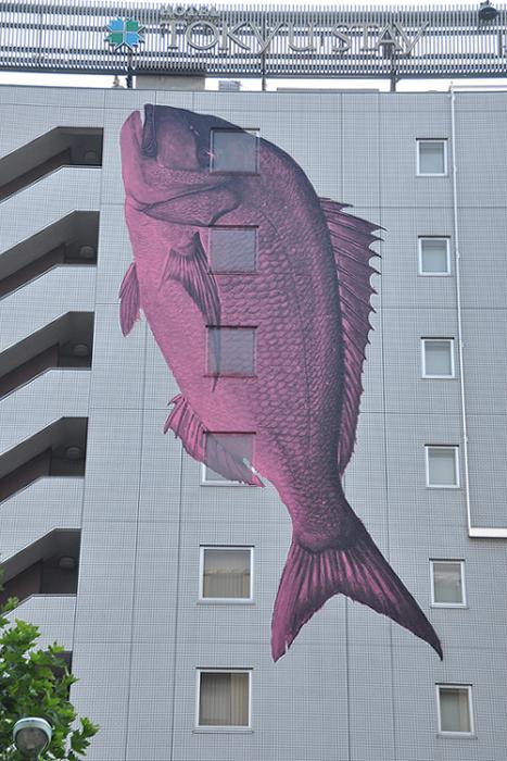 壁面を泳ぐ魚