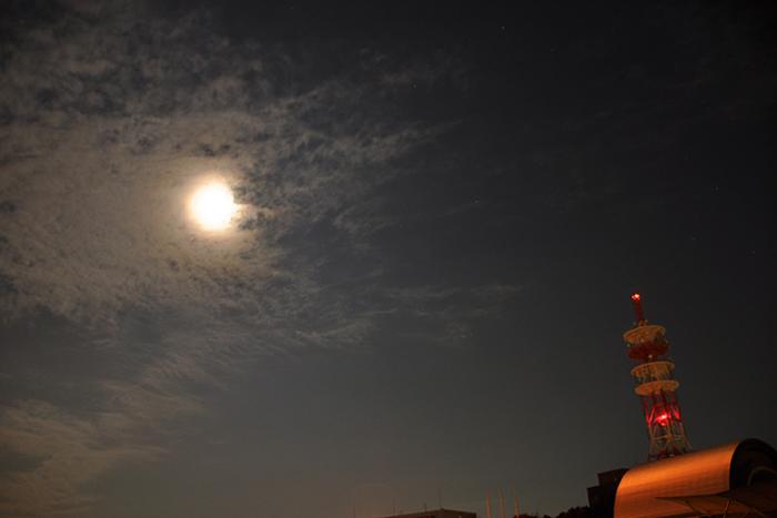 航空公園の夜